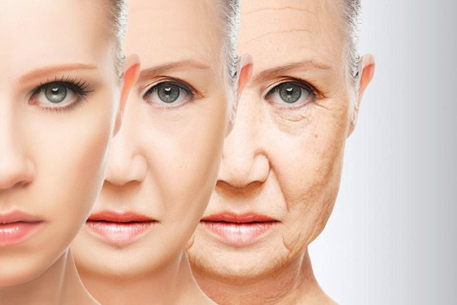 Cách ngăn ngừa lão hóa da